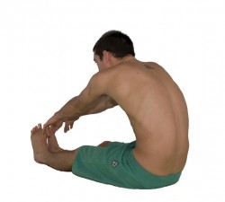 Forward-bends-can-be-harmful-to-your-body-250x225
