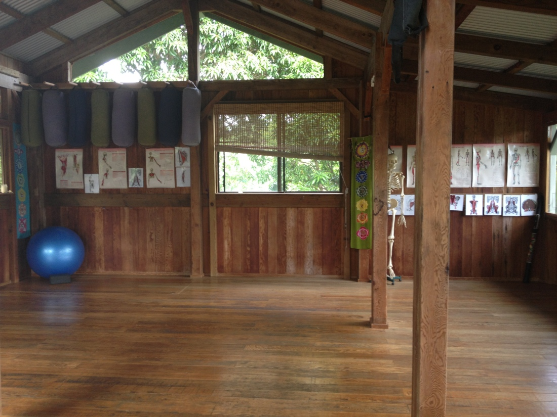 The studio where we practiced daily. Michaelle hosts regular retreats and training on her property: Manayoga.com
